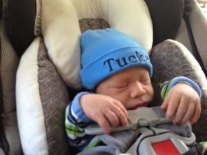 Baby Tucker Barzee